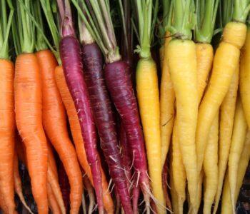 Köögiviljataimede müük